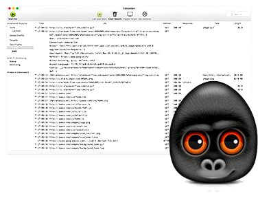 ‎lanscan around the mac application store IPv4 address