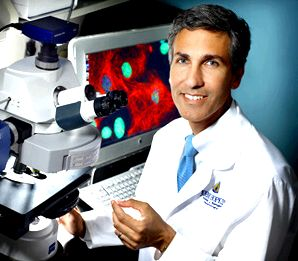 Research laboratories: neurology and neurosurgery, johns hopkins medicine these cancers