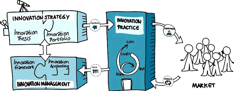 The organization innovation ecosystem They favour temporary gains through